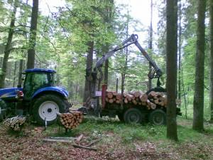 biomasse-siram-300x225