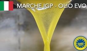 Marche-olio IGP