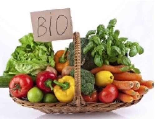 CERTIFICAZIONE AGRICOLTURA BIOLOGICA