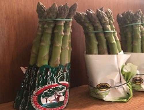 L'asparago, da pietanza offerta agli ufficiali da Giulio Cesare a coltivazione controllata e sicura