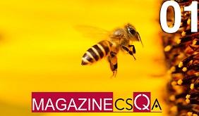 CSQA Magazine su Magazine Qualità