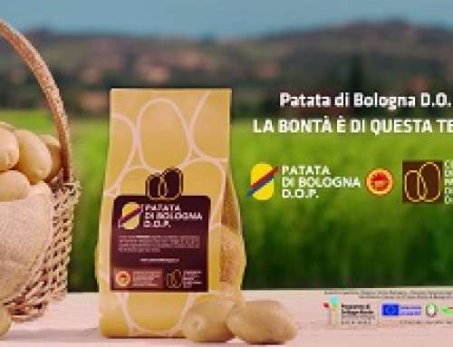 Patata di Bologna D.O.P. torna in campagna TV e Digital