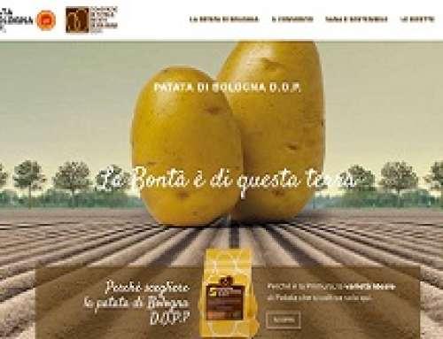 PATATA DI BOLOGNA D.O.P. FRA I TRE CONSORZI PIÙ DIGITAL D'ITALIA