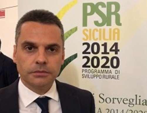 Regione Sicilia: € 1.800.000 per l'agricoltura di Qualità