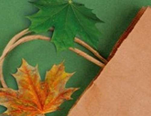 """Emilia-Romagna leader nelle certificazioni """"green"""""""