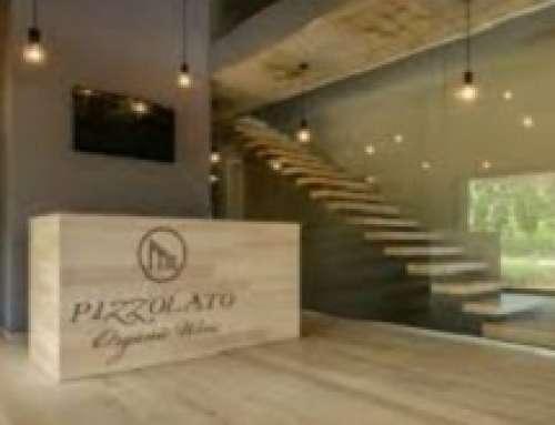 Cantina Pizzolato: vino biologico e cantina sostenibile