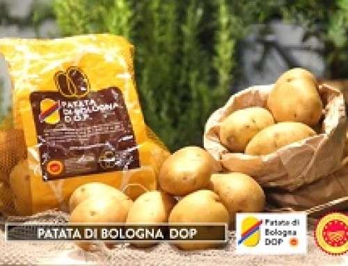 La Patata di Bologna D.O.P. in TV su RAI 2