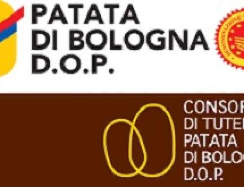 LA PATATA DI BOLOGNA È D.O.P.