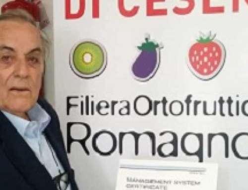 ISO 9001 per il Mercato ortofrutticolo di Cesena