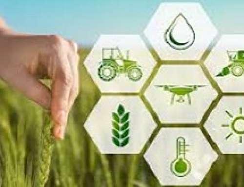 Verso una agricoltura 4.0 e oltre
