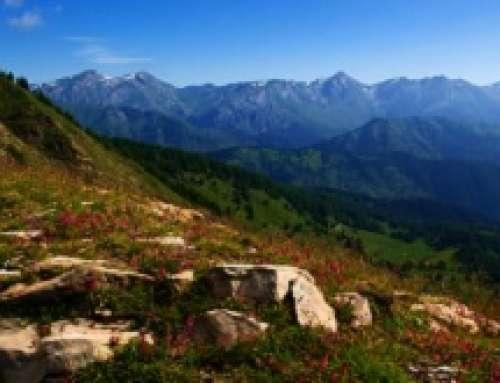 Parco Alpi Liguri rinnova ISO 14001:2015 con Certiquality