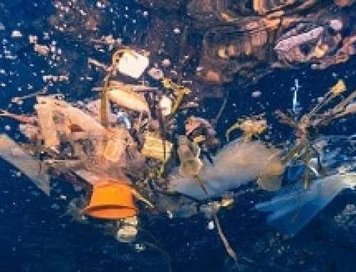 Il nostro futuro e quello della plastica