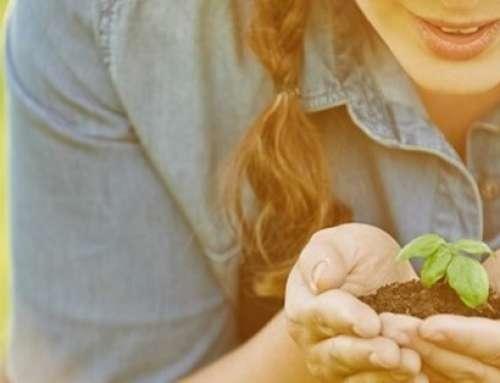 """""""Made Green in Italy"""", l'accreditamento garantisce il marchio di sostenibilità"""