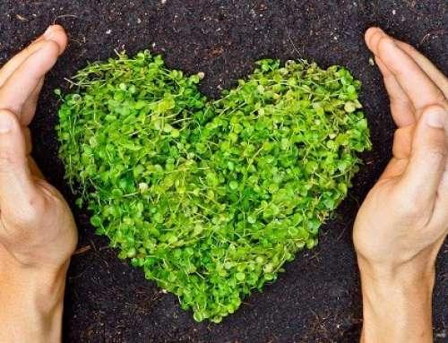 La strada verso la sostenibilità è ancora lunga