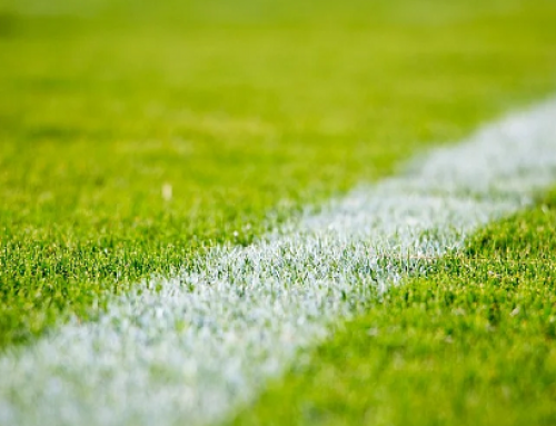 Manti in erba artificiale: pubblicata la UNI 11811
