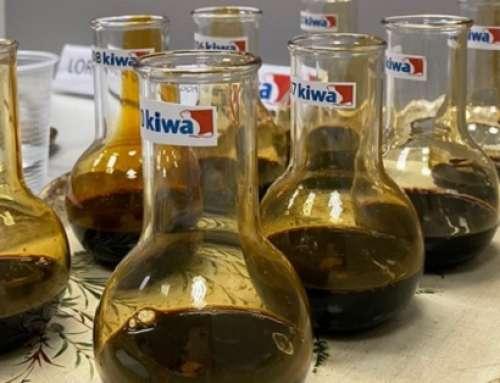 Aceto Balsamico Tradizionale di Modena DOP: eccellenza italiana certificata Kiwa