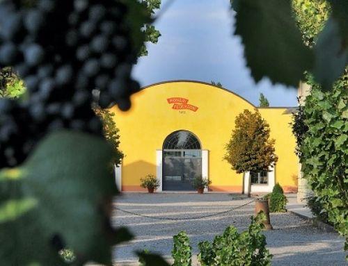 Monari Federzoni: la via sostenibile dell'Aceto Balsamico di Modena Igp
