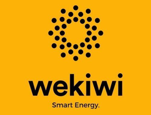 Wekiwi ottiene la certificazione B Corporation