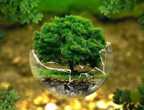 Gestione Ambientale –Esperienze pratiche di applicazione della UNI EN ISO 14001