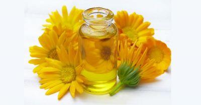 vegetable oil uni su magazine qualità