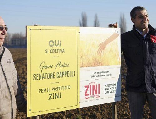 """Zini riceve il """"Premio Nazionale Ambiente 2020-2021"""""""