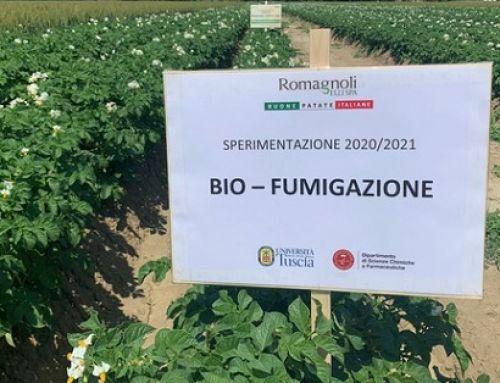 Romagnoli F.lli: proseguono le sperimentazioni in campo nel segno dell'agricoltura sostenibile